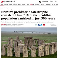 Britain's prehistoric catastrophe revealed: How 90% of the neolithic population vanished in just 300 years