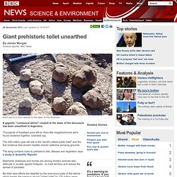 Giant prehistoric toilet unearthed
