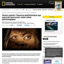 Homo naledi, l'homme préhistorique qui pourrait bousculer notre arbre généalogique