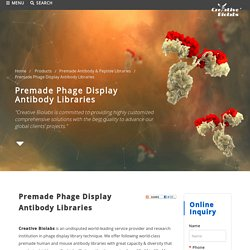 Premade Phage Display Antibody Libraries