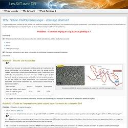 TP5 : Notion d'ARN prémessager – épissage alternatif