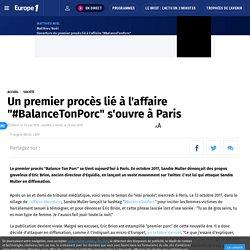 """Un premier procès lié à l'affaire """"#BalanceTonPorc"""" s'ouvre à Paris"""