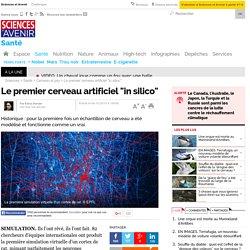 """Le premier cerveau artificiel """"in silico"""""""