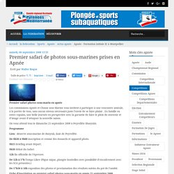 Premier safari de photos sous-marines prises en Apnée - FFESSM PM