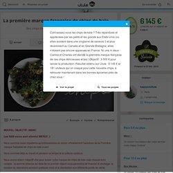 La première marque française de chips de kale crues et bio!