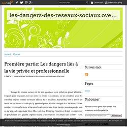 Première partie: Les dangers liés à la vie privée et professionnelle - les-dangers-des-reseaux-sociaux.over-blog.com