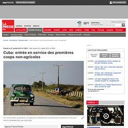 Cuba: entrée en service des premières coopératives non-agricoles
