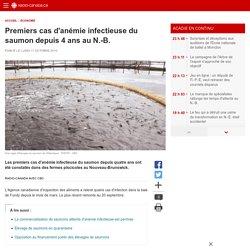RADIO CANADA 17/10/16 Premiers cas d'anémie infectieuse du saumon depuis 4 ans au N.-B.