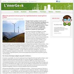 Bilan des premiers retours pour les expérimentations smart grid en France