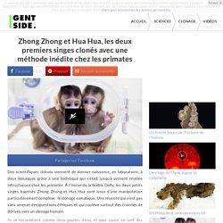 Zhong Zhong et Hua Hua, les deux premiers singes clonés avec une méthode inédite chez les primates