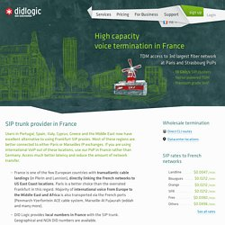 Premium SIP termination in Paris, France - carrier direct, low latency