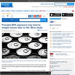 Prenatal BPA exposure may lead to weight issues later in life: Mice study