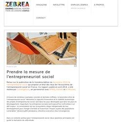Prendre la mesure de l'entrepreneuriat social