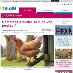 Prendre soin de ses poules - Comment s'occuper de poules dans son jardin
