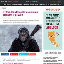 films avec des animaux qui prennent le pouvoirs : sélection de 5 films