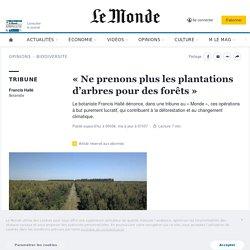 «Ne prenons plus les plantations d'arbres pour des forêts»