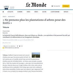 Francis Hallé - Le Monde - Août 2020 - «Ne prenons plus les plantations d'arbres pour des forêts»