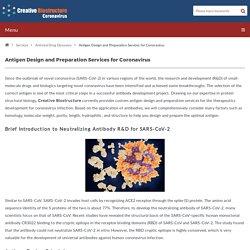 Antigen Design and Preparation Services for Coronavirus
