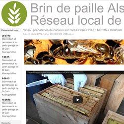 Vidéo : préparation de nucleus sur ruches warré avec 3 barrettes minimum