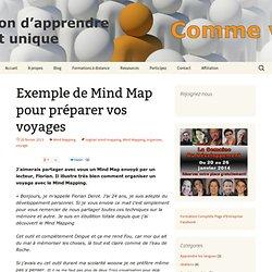 Exemple de Mind Map pour préparer vos voyages