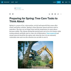 Preparing for Spring: Tree Care Tasks to Think About