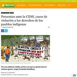 Presentan ante la CIDH, casos de violación a los derechos de los pueblos indígenas · Talacha informativa