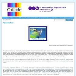 Presentation - Caillade