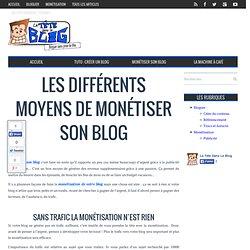 La Tete Dans Le Blog / Présentation de différents moyens pour monétiser son blog