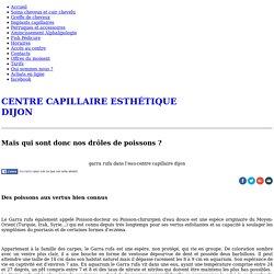 Présentation Garra rufa - Centre Capillaire Esthétiques Dijon