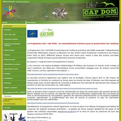 Présentation - www.faune-guyane.fr