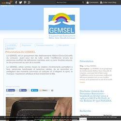 Présentation du GEMSEL - Le blog GEMSEL