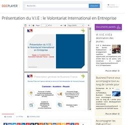⭐Présentation du V.I.E : le Volontariat International en Entreprise