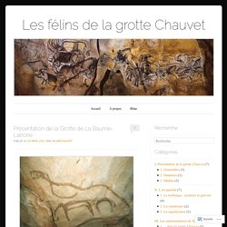 Présentation de la Grotte de La Baume-Latrone