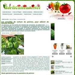 Présentation et procédés de culture du poivron