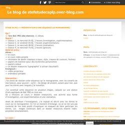 STAGE S4/M2 >> Présentation d'une séquence (le monogramme) - Le blog de stefetudecaplp.over-blog.com
