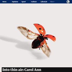 Into thin air: Carol Ann Duffy presents poems about our vanishing insect world