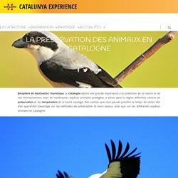 La Préservation des Animaux en Catalogne – Catalunya Experience