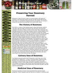 Preserving Your Rosemary Harvest
