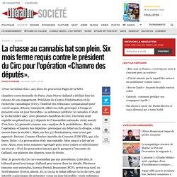 La chasse au cannabis bat son plein. Six mois ferme requis contre le président du Circ pour l'opération «Chanvre des députés».