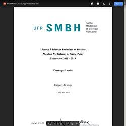 PRESSAGER Louise_Rapport de stage.pdf