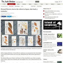 Pressed flowers, leaves the oldest in Japan, date back 3 centuries:The Asahi Shimbun