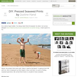 DIY: Pressed Seaweed Prints: Remodelista