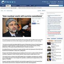 Iran nuclear work will survive sanctions'