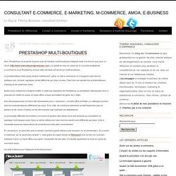 Consultant e-commerce, e-marketing, m-commerce, amoa, e-business
