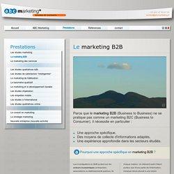 ABC Marketing, études et conseils - Prestations - La Stratégie Marketing - ABC Marketing, votre partenaire pour réaliser des études B2B -