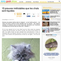 15 preuves irréfutables que les chats sont liquides