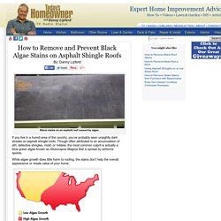 How to Remove and Prevent Black Algae Stains on Asphalt Shingle Roofs