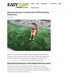Prevent Lawn Diseases for Good with Artificial Putting Green Grass