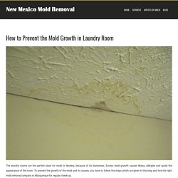 How to Prevent the Mold Growth in Laundry Room