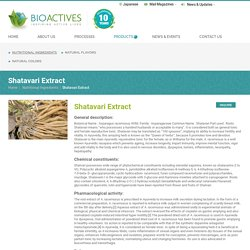Shatavari Asparagus Supplier - Bioactives